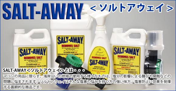 salt-bn_w580